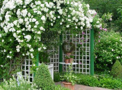 44 best draußen: leserbilder images on pinterest | live, flowers, Garten und bauen