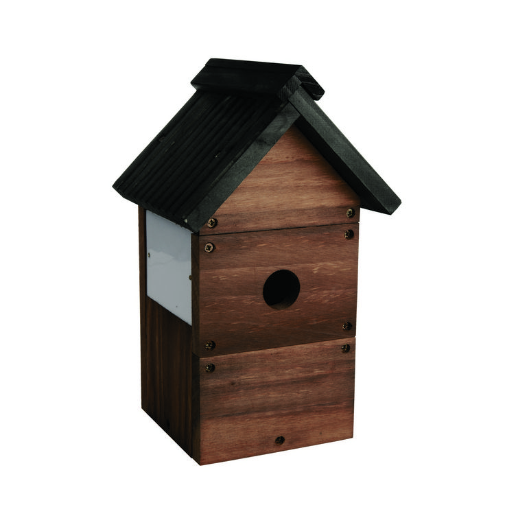 Camera Bird Nest Box Kit | Gardens | The Range  sc 1 st  Pinterest : cameras for bird boxes - Aboutintivar.Com