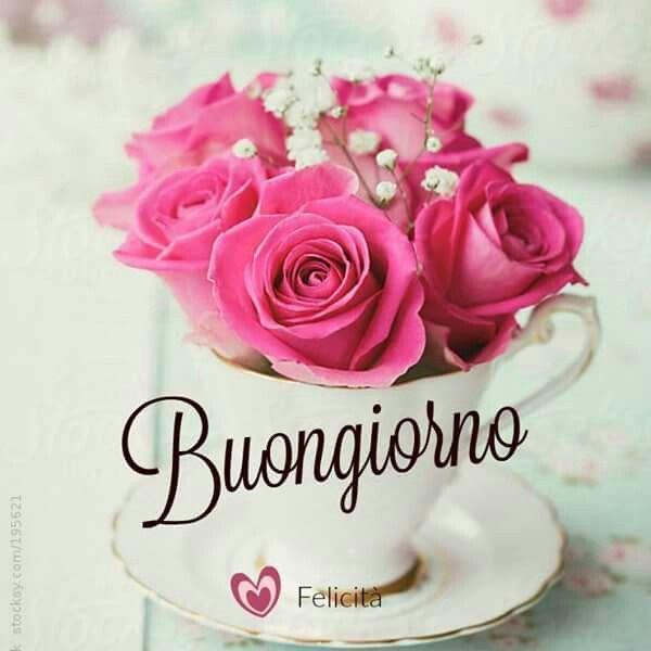 686 best images about immagini di buon giorno on pinterest for Buongiorno o buon giorno immagini