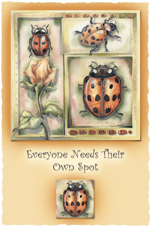 Bergsma Gallery Press::Paintings::Insects & Amphibians::Misc. Insects::Everyone Needs Their Own Spot - Prints