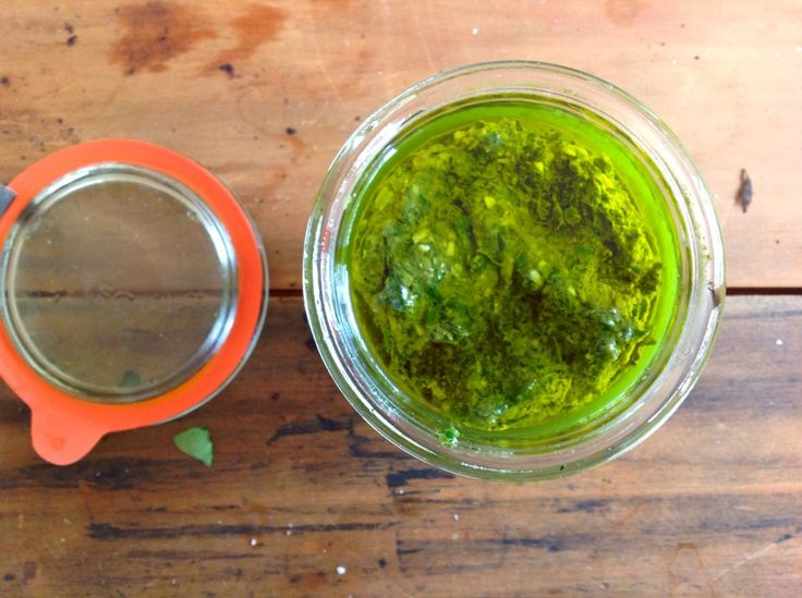 How to Grow Basil and Turn it into Pesto