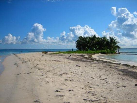 Qui dit Guadeloupe pense plages de rêve et lagons aux eaux cristallines... Mais l'île papillon recèle bien d'autres attraits humains et naturels. Nous vous proposons un petit guide touristique pour visiter l'île en dehors des sentiers battus et des circuits habituels. par Audrey