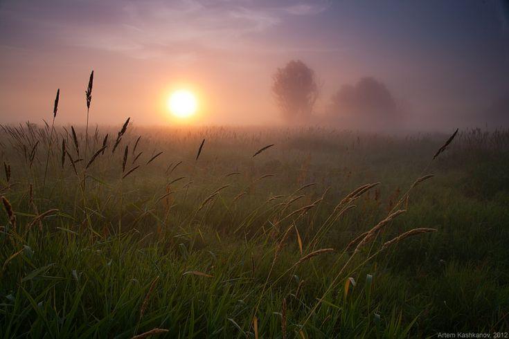 Рассвет в лугах - Красивые летние фотографии