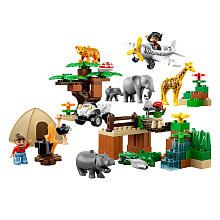 LEGO Duplo LEGOVille Photo Safari (6156)