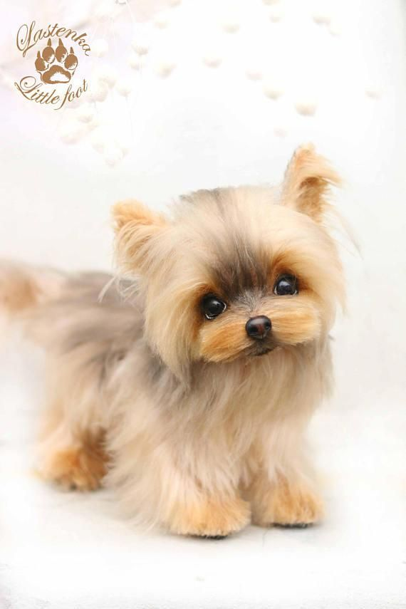 bc8f3131498d Yorkie Amelia handmade mohair collectible Artist toy OOAK teddy dog  Yorkshire Terrier Portrait pet