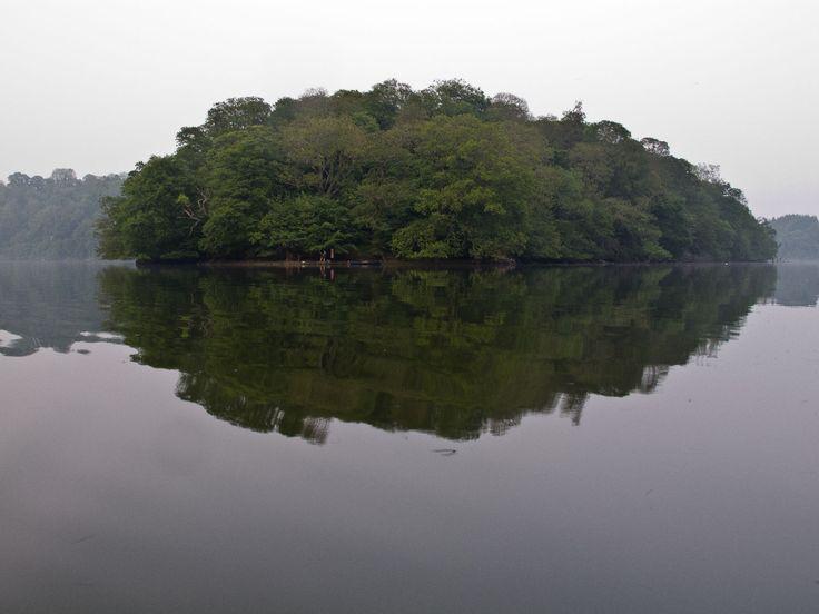 The Dart River