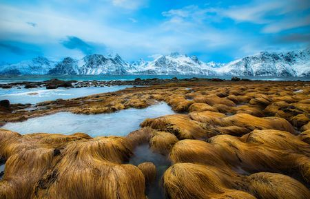 Trolls Photo by Anders Hanssen -- National Geographic Your Shot
