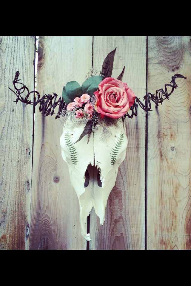 Awesome cow skull!