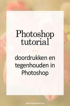 Tutorial – durchdrücken und anhalten in Photoshop – Fotografille