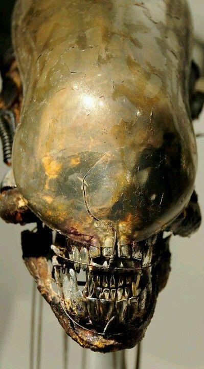 HR Giger alien head iN German film museum 2009