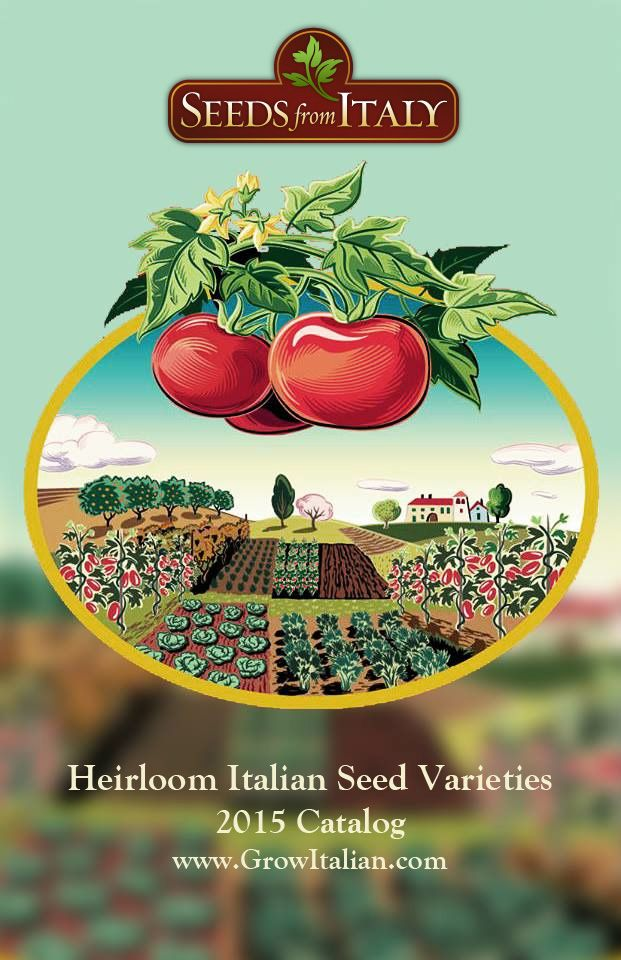 Seeds From Italy Is The Exclusive U.S. Mail Order Distributor For Franchi  Seeds, Italyu0027s