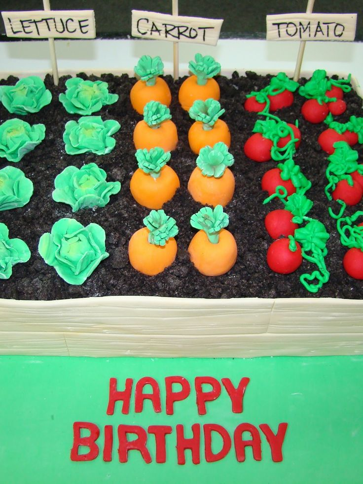 "garden themed birthday | ... garden bed with crushed oreo ""dirt"", fondant vegetables, and garden"