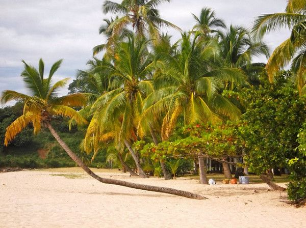 Interesting Facts About Madagascar: Beach Landscape