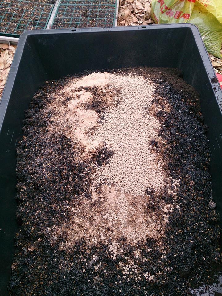 140404稲種おろし(苗箱編)黒土&完熟もみ殻堆肥&もみ殻くん炭&ミネラル分(貝殻など)&グアノを混ぜ合わせ、種まき用土を作る