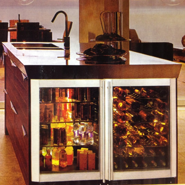 Vissani built in beverage cooler and wine cooler side by - Kitchens with wine coolers ...