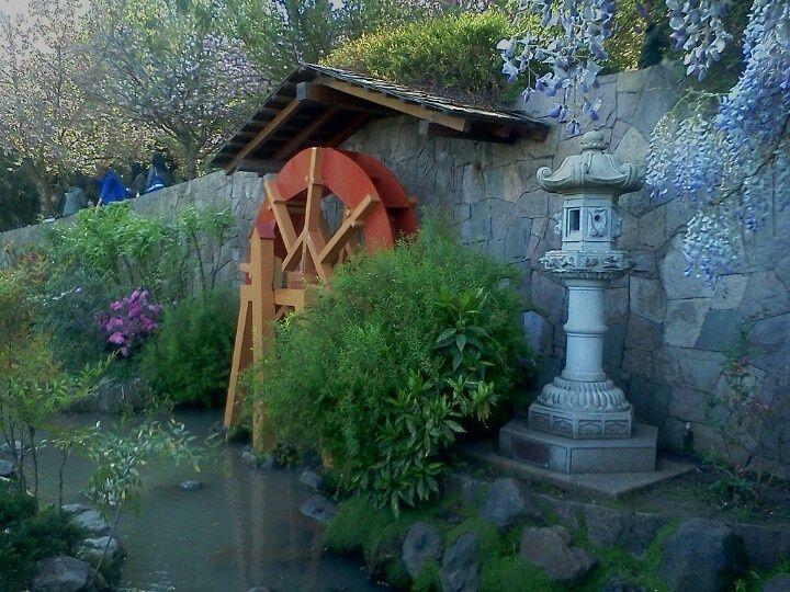 jardines en chile | Jardin japones, Santiago Chile