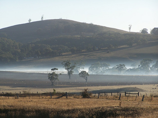 early morning north of Ballan, Victoria, Australia ......