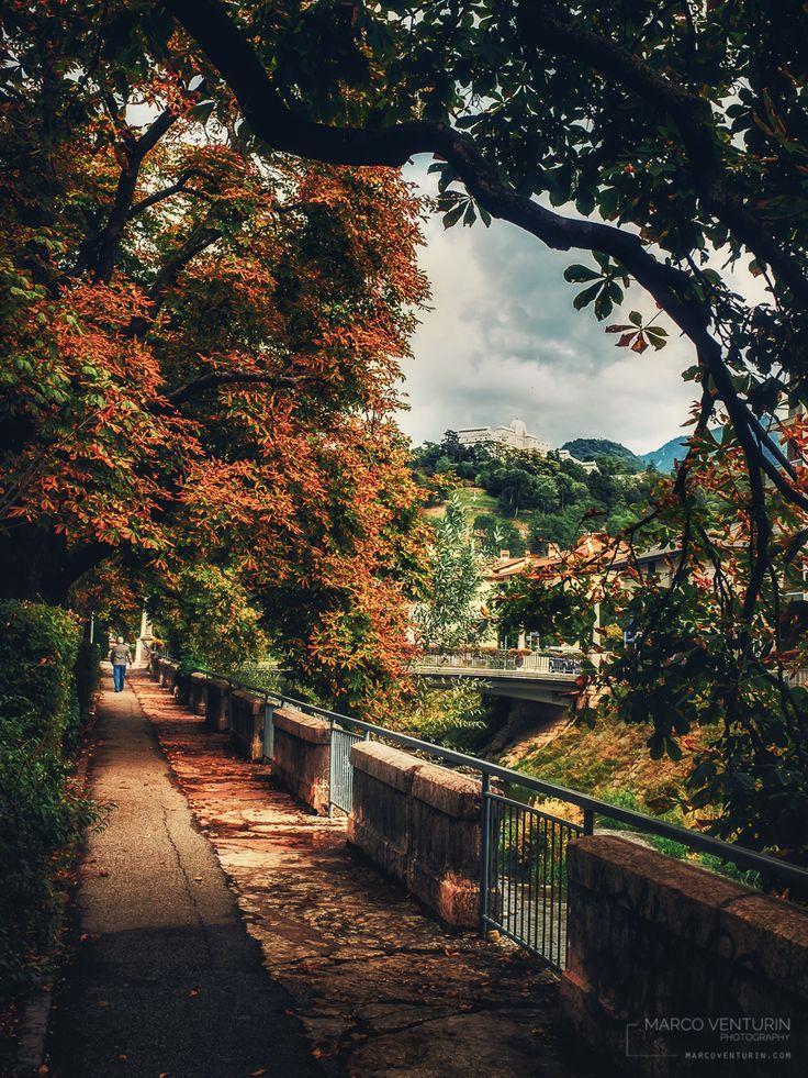 Giornata grigia in città. Solo gli alberi carichi di autunno riscaldano l'ambiente. Poche persone in giro. Quasi quasi si mette pure a piovere. In realtà era una settimana che aspettavo di av…