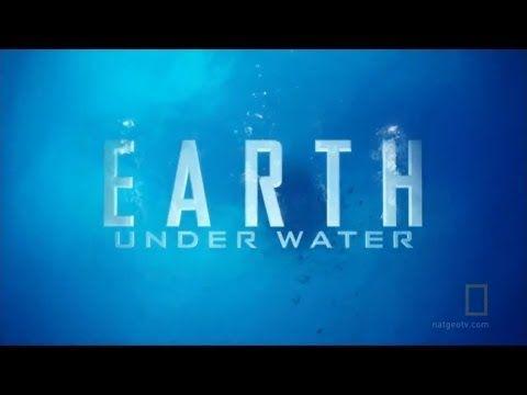 WORLD TV  SelenatorsUnite SeaToronto  #REVIVAL Of Earth and The Revelations asWe Read the BookOfSOULS. AllRoundThePlanet