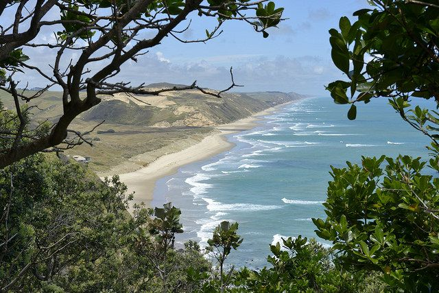Gorgeous New Zealand coast line!