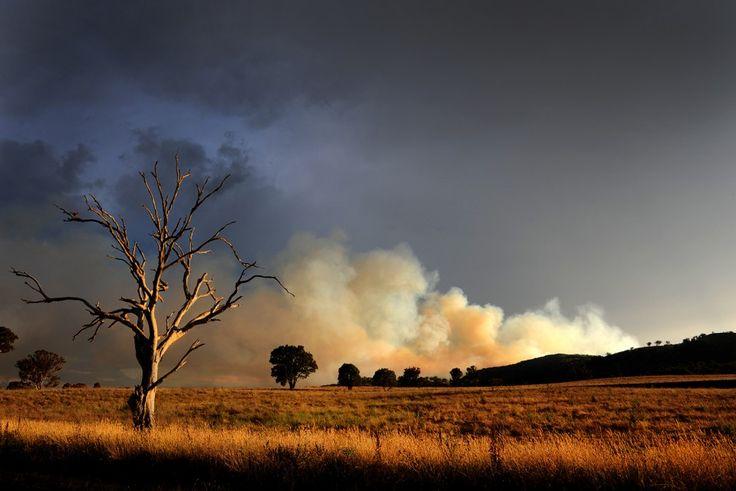 Riverlea Road Bushfire, Mudgee. Photo by Amber Hooper.