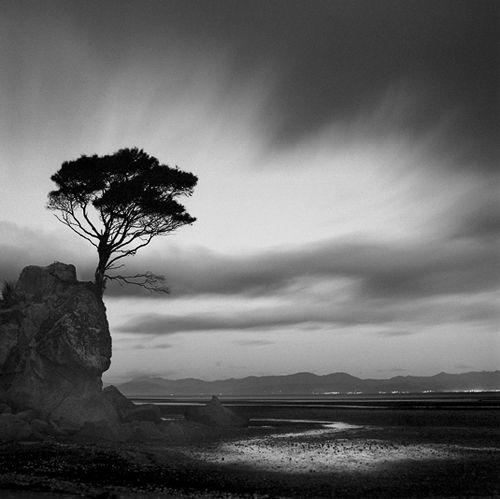 DARRYL GILBERT South Island photography :