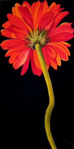 SINGLE RED DAISY ~ by Marcia Baldwin Sold Commission Orders Welcome