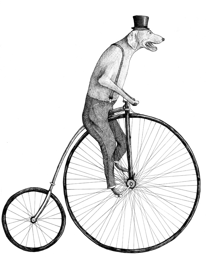 penny farthing by kate lindop