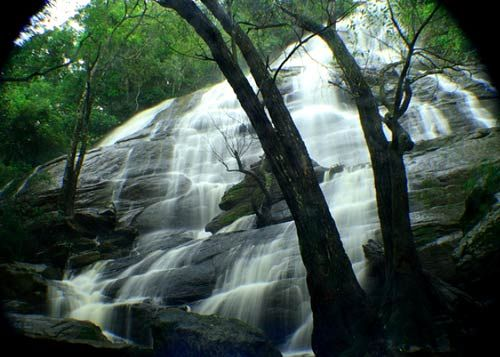 Killiyur falls is a 300 ft high lovely waterfall near Yercaud which is a famous hill station in Tamil Nadu. It is just 36km away from Salem town. The coffee plantations, orange groves and the misty hills contribute for the scenic beauty of Yercaud. More details, Comment below with your contact number or Email id with your budget... Call us on : 7666717946/45 Or log on to www.metrotoursandtravels.com
