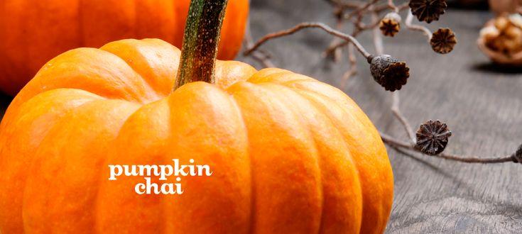 Pumpkin Chai by DavidsTea
