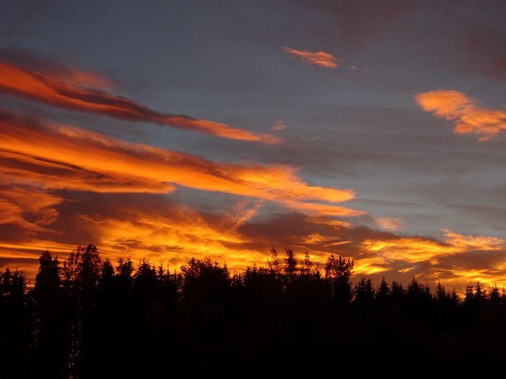 Den røde himmel.
