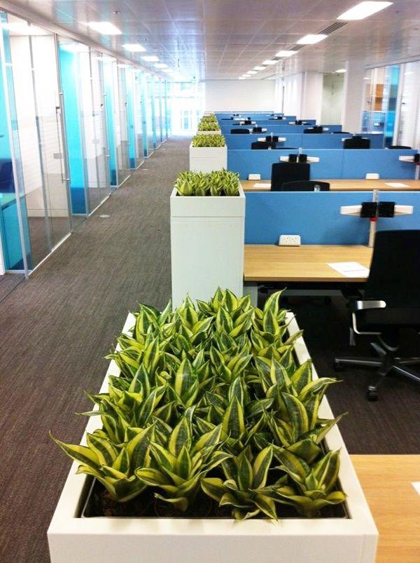 40 Refreshing Indoor Office Garden Installation Ideas Office Plants Open Office Design Open Office Layout