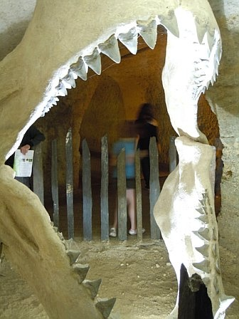 Dinosaur jaw