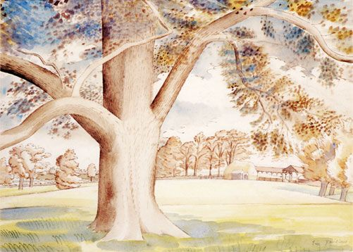 'Field Elm' by Eric Ravilious, 1932