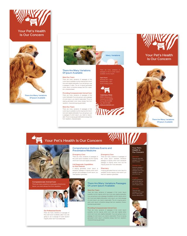 23 best images about pet rescue design on pinterest for Clinic brochure template