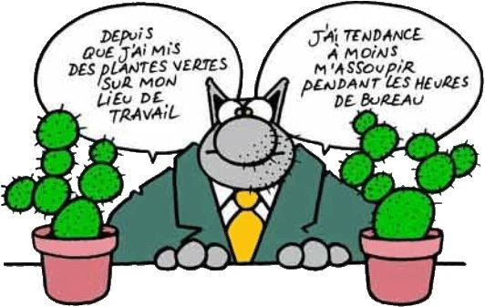 Le Chat : Philippe Geluck