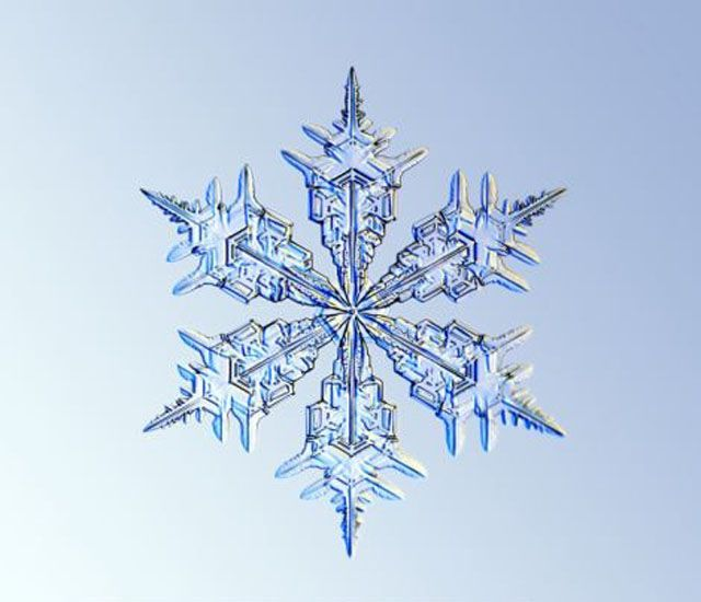 real snowflakes | The Beauty of Snowflakes Up Close (24 pics)