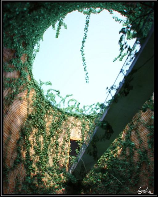 Tadao Ando .1993-1994. Hyogo, Japan. Museum of wood.