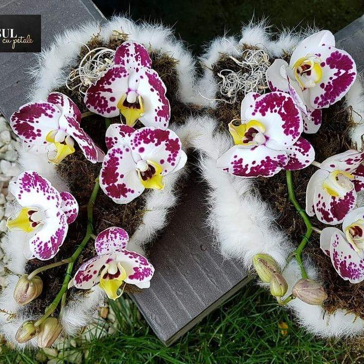 Funerar flower arrangement