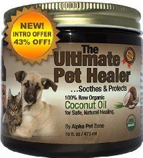 Cure Dogs Allergies Naturally