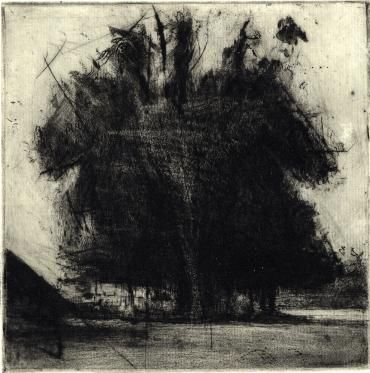 'Copse', by Lee Newman.  Drypoint