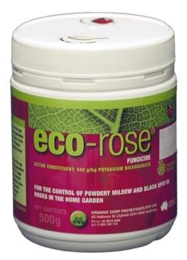 eco rose organic fungicide for powdery mildew, black spot