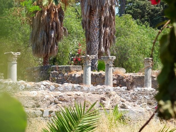 Ancient Agora in Kos town #kos #greekislands #greece