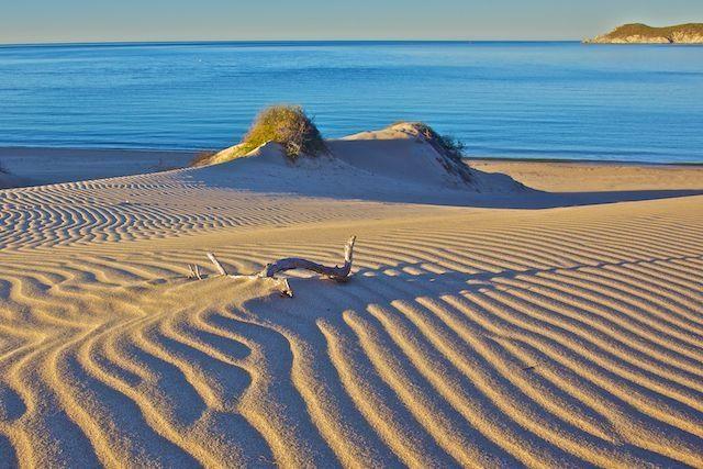 Los Algodones Sand Dunes, San Carlos, Sonora, Mexico