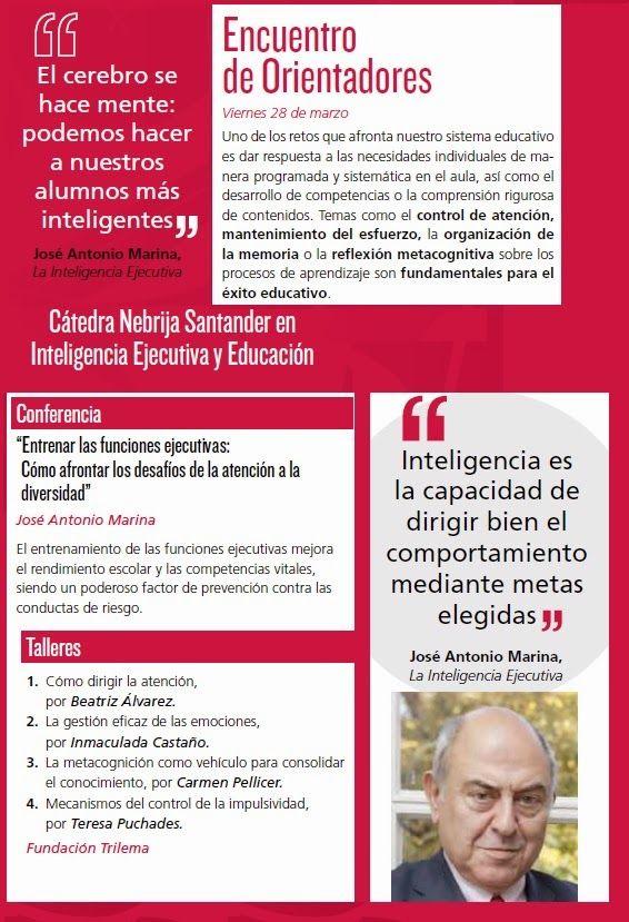 ¿Qué importancia tienen las funciones ejecutivas de la inteligencia en el rendimiento escolar?