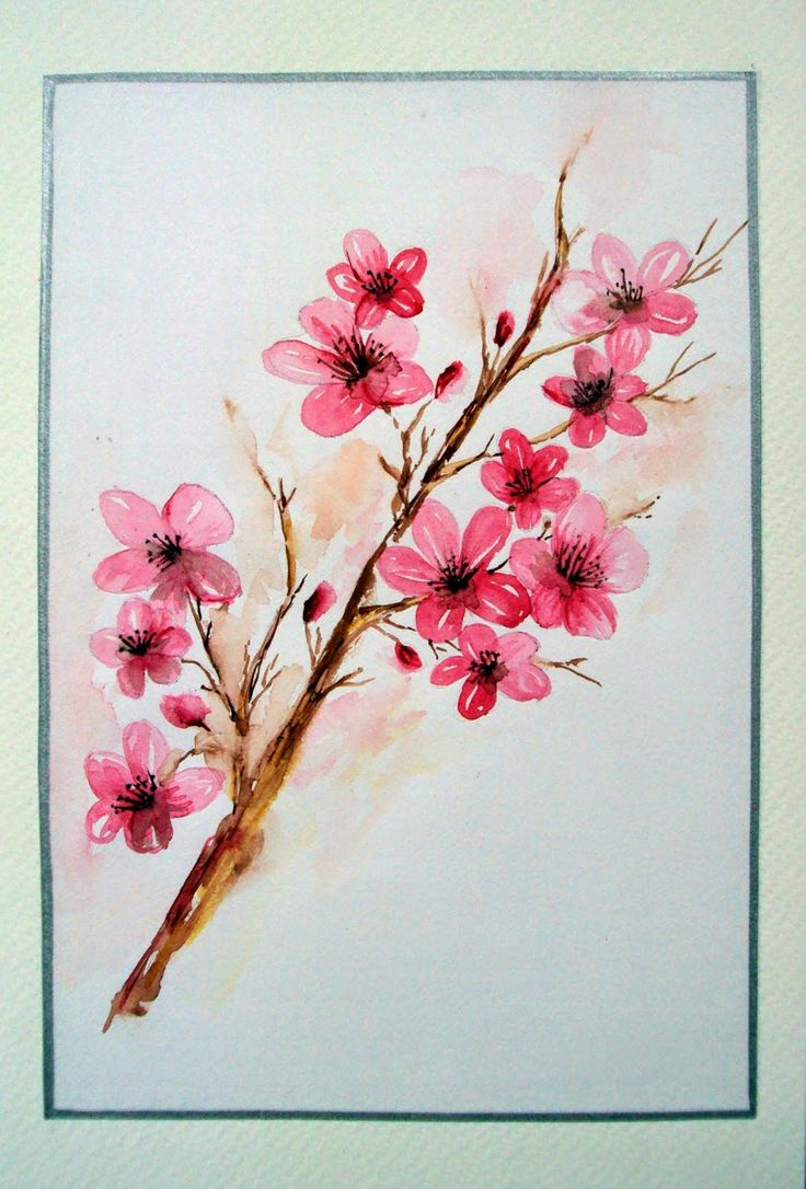 """Cherry Blooms"" #nature #pink #blooms #flowers #cherry #painted #watercolorcard #beauty #cherryflowers #pinkflowers #cardmaking"