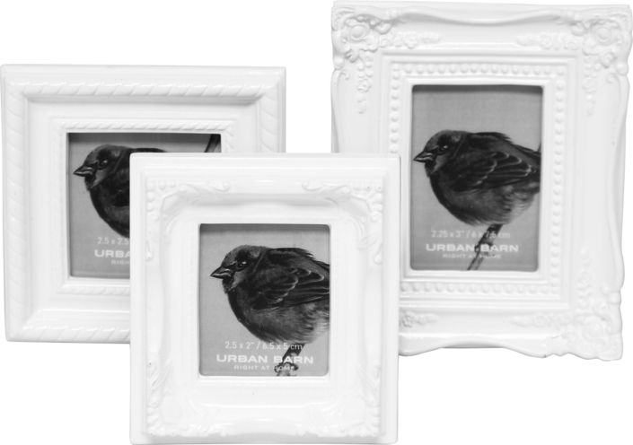 The Sara Frames – Set of 3 from Urban Barn is a unique home decor item. Urban Barn carries a variety of Frames and other  products furnishings.
