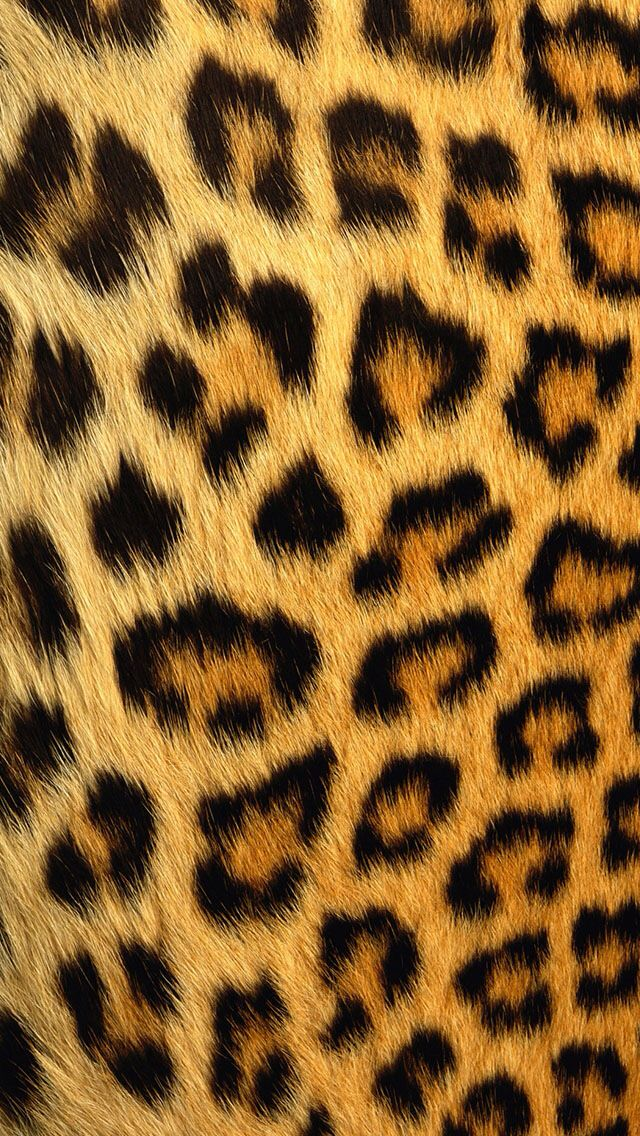 iphone 6 plus leopard print wallpaper