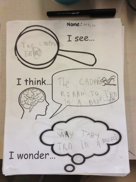 Inquiry in kindergarten.