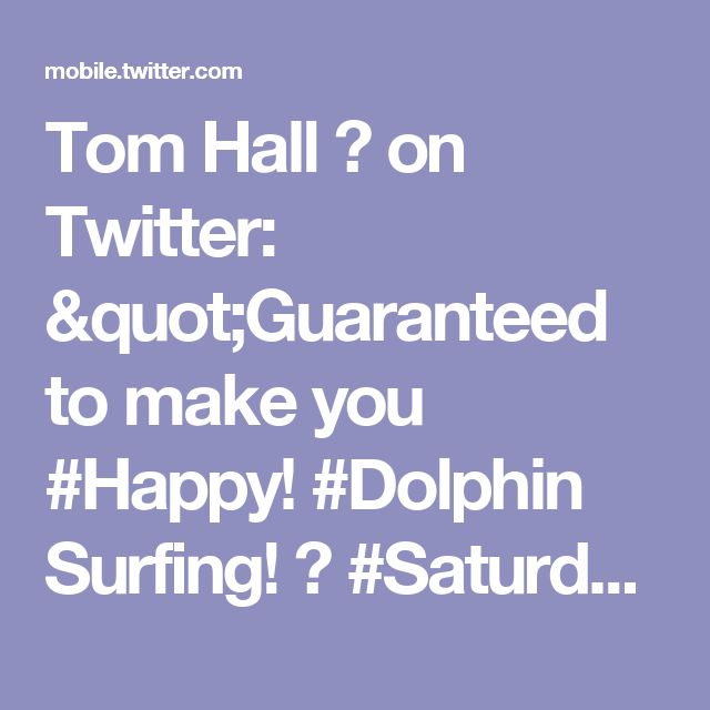 """Tom Hall ☘ on Twitter: """"Guaranteed to make you #Happy!  #Dolphin Surfing!  🐬  #SaturdayMorning #Travel #Vacation #Beach #Dolphins https://t.co/CNNUBUYkVM"""""""
